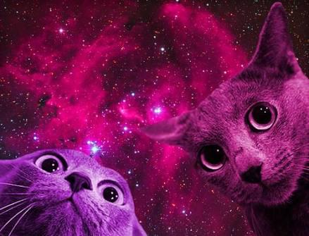 galaksinin50tonu kullanıcı resmi